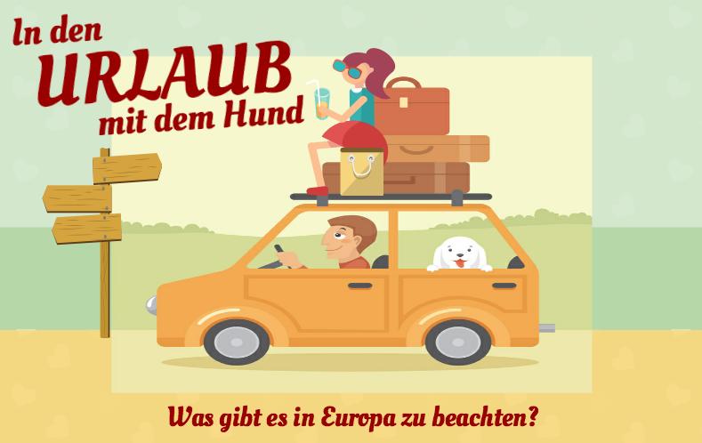 neue-version-infografik-hundeurlaub-mit-frau-auf-dem-auto1