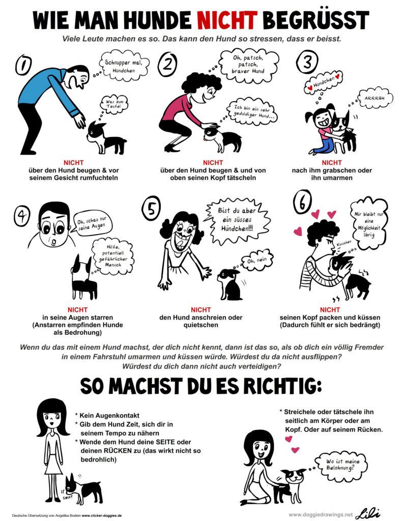 Infografik Hundeknigge