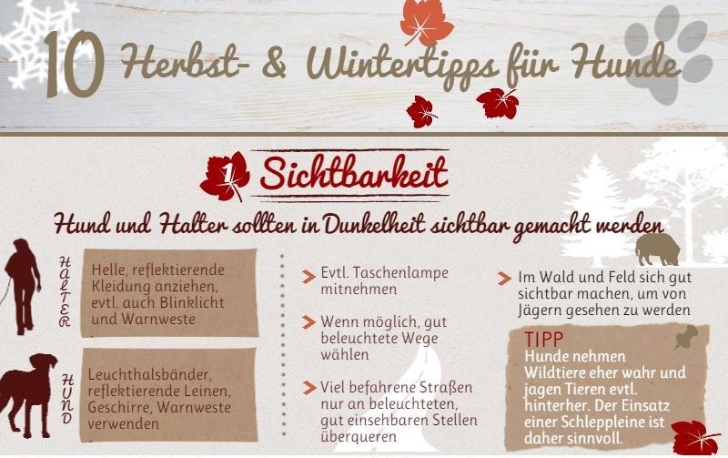infografik-herbst-und-wintertipps-fuer-hunde-klein