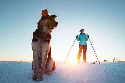 Frua mit Skiern und Hund im Schnee