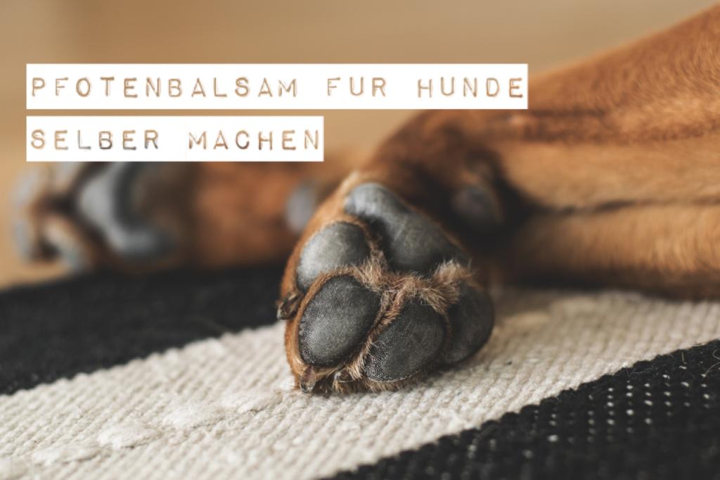 Pfotenbalsam für Hunde selber machen