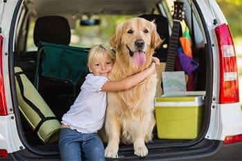 hundeurlaub dein urlaub mit hund in ferienwohnung oder. Black Bedroom Furniture Sets. Home Design Ideas